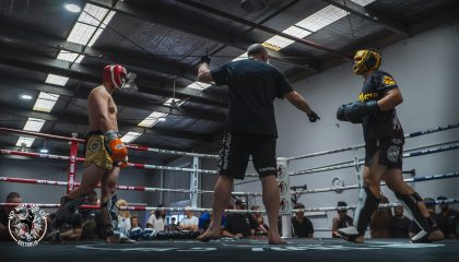 Sparring<br /> (members only)
